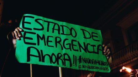 Cartel de manifestación que dice: Estado de Emergencia Ahora.